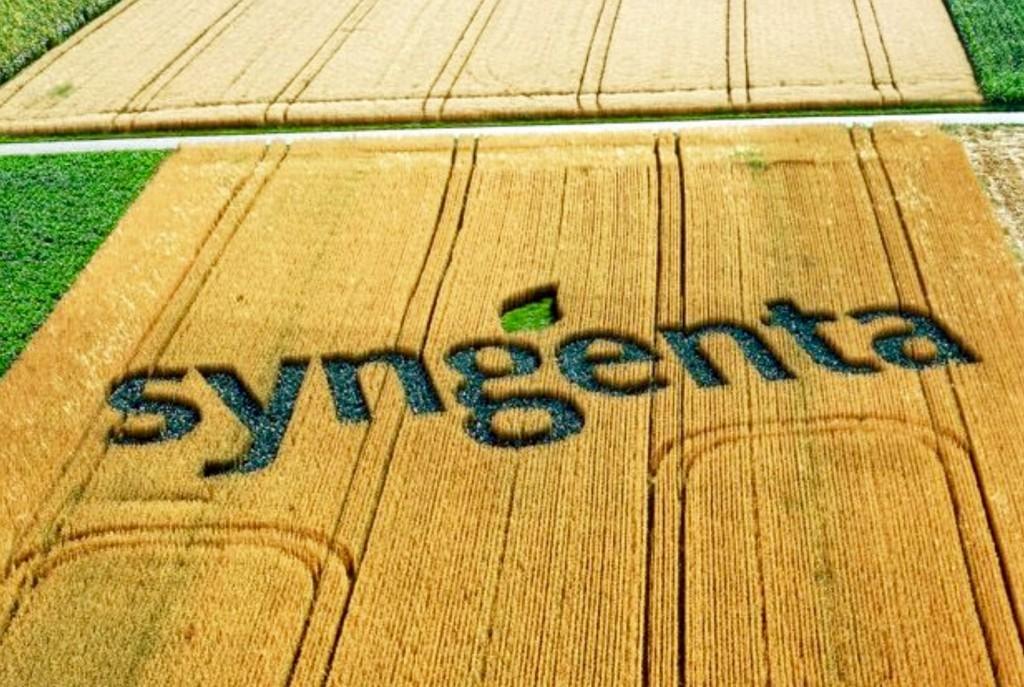syngenta-1024x687.jpg