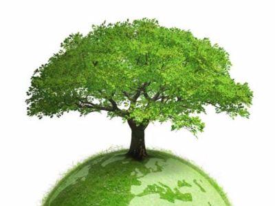 """交银国际:维持光大绿色环保(01257)""""买入"""" 目标价8.24元"""