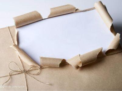 玖龙纸业(02689):行业变革进行中