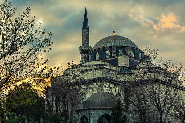 土耳其引发的危机