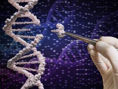 FDA前评审官姚毅出任中国生物科技服务(08037)执行董事兼董事会联席主席