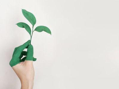 小摩增持减持万科企业(02202)207万股 每股作价30.17港元