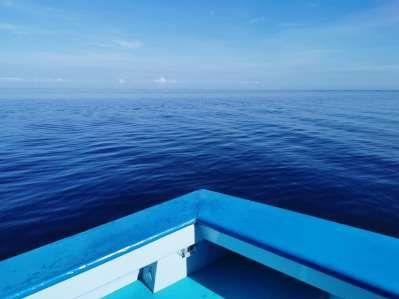 港股异动︱中船防务(00317)A股一度涨停 H股跟涨逾6%