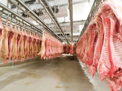 港股异动︱7月猪肉价格环比涨7.8% 中粮肉食(01610)现涨7.2%