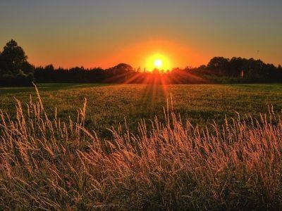 迪尔(DE.US)Q3归属公司净利润同比下降1% 受农业持续不确定性拖累