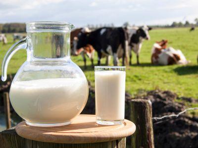 牛奶产业链全景图:上游原奶盈利改善新周期开启,下游液体奶行业竞争逐步缓和