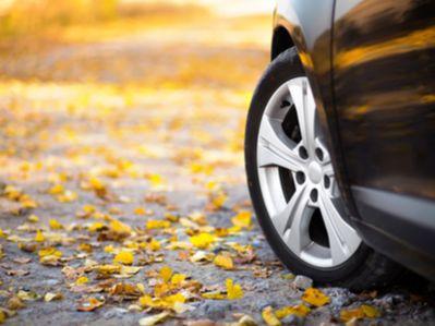 11月乘用车市走势偏弱 12月车市零售有望加速回暖
