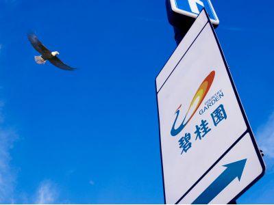 碧桂园(02007)1月归属股东权益合同销售额329.2亿元
