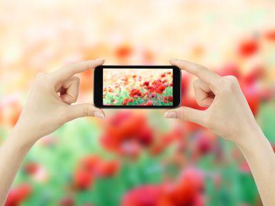 安卓之父手机创业再失败,是败给任性,更是败给市场