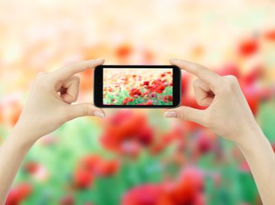 港股异动︱1月全球智能手机出货量同比降7% 通达集团(00698)跌近13%领跌手机产业链