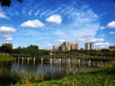 中国诚通发展集团(00217)2019年拥有人应占利润4753.9万港元 同比下滑58%