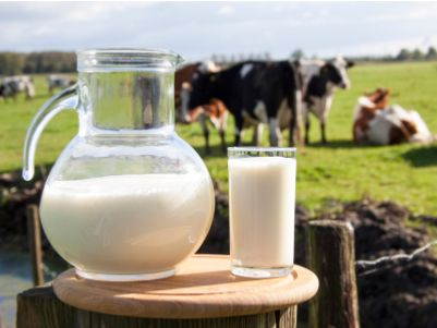 """13个小时暴涨1.2倍,中地乳业(01492)的""""原奶""""开始香了…"""
