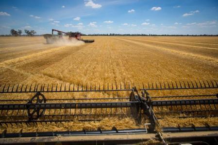 美股异动   扩大线上销售规模,农米良品(FAMI.US)盘前涨逾8%